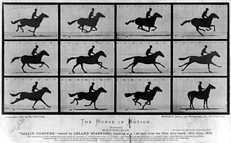 The Fairman Rogers Four-in-Hand - The Horse in Motion, Sallie Gardner Series (1878) by Eadweard Muybridge.