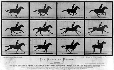The Horse in Motion.jpg