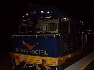 Indian Pacific - A stationary Indian Pacific during the night (2010)