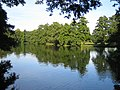 The Lake in Boultham Park - geograph.org.uk - 52578.jpg