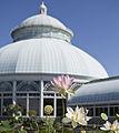 The New York Botanical Garden Conservatory Dome.jpg