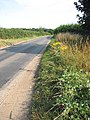 The Old Fakenham Road - geograph.org.uk - 899919.jpg