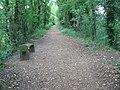 The Pilgrim's Trail near Bishop's Waltham - geograph.org.uk - 1358051.jpg
