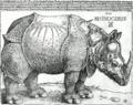 The Rhinoceros (NGA 1964.8.697) bw.png