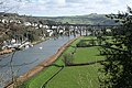 The Tamar downstream from Calstock - geograph.org.uk - 673402.jpg