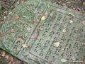 The jewish cemetery of Warszawa-Radość.jpg