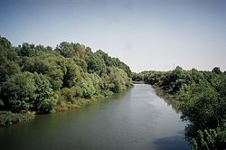 The river Körös near the Hungarian town Mezőberény.jpg