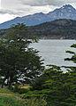 Tierra del Fuego04(js).jpg