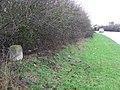 To Cambridge IV (4) - geograph.org.uk - 1778202.jpg