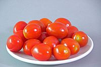 Tomato variety Dattel Cherry 02 (fcm) .jpg