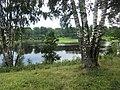 Torpasjön, Sörby sn 2011 - 2608.jpg