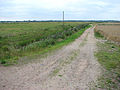 Track to Low Road - geograph.org.uk - 1442760.jpg