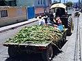 Tractor en Huamantla, Tlaxcala 01.jpg