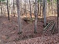 Trail 2 PB250224.jpg