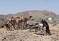 Transporting Water Kenyan Arid Areas.jpg