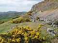 Trefor Rocks Quarry - geograph.org.uk - 1297265.jpg