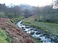 Tributary of the River Fechlin - geograph.org.uk - 284536.jpg