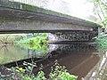 Triftwegbrücke 4.jpg