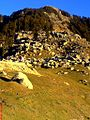 Triund the first campground of Triund Hill.jpg