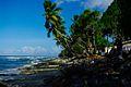 Tuvalu Inaba-8.jpg