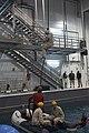 U.S. Marines practice water survival skills with Spanish allies 170215-M-VA786-1085.jpg