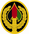 USAE Special Operations Joint Task Force Afghanistan SSI 2013-04-30.png