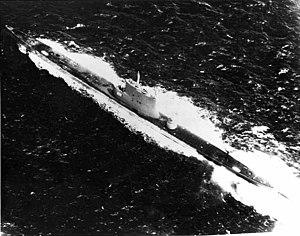 USS Ray;0827115