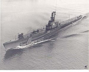 USS Toro (SS-422) shown post-war, after removal of her deck guns.
