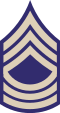 US Army WWII MSGT.svg