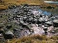 Ubayette près lac 2014-10-17 11-23.JPG
