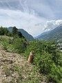 Une borne lors de l'ascension du Mont-Dauphin en 2020 (3).jpg