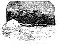 Une française au pôle Nord (...)Maël Pierre bpt6k5698198g 182.jpg