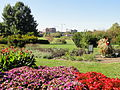 University of Kentucky Arboretum - DSC09378.JPG