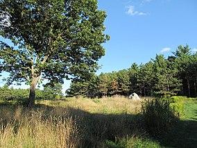 Upper Meadow, Doyle Community Park, Leominster MA.jpg