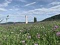 Urbach Tower Photo Aug 09, 3 20 02 PM.jpg