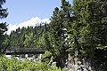 Vadret da Morteratsch - panoramio (10).jpg