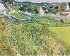 Van Gogh - Weinberge mit Blick auf Auvers.jpeg