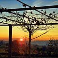 Vanuit de tuin chocolaterie Defroidmont - panoramio.jpg