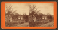 Vicinity, Philadelphia, from Robert N. Dennis collection of stereoscopic views.png