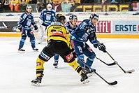 Vienna Capitals vs Fehervar AV19 -172.jpg