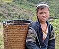 Vietnamese girl with wicker basket doing farm job, 2013.jpg