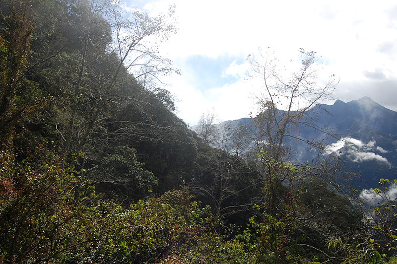 File:View From Sinbaiyang in Hehuanshan (5453897034).jpg