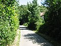 View along Chalksole Green Lane - geograph.org.uk - 871260.jpg