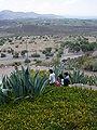 View from Cerro de la Gloria - Mendoza - Argentina.jpg