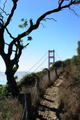 View of Golden Gate Bridge from Coastal Trail in Marin Headlands.png
