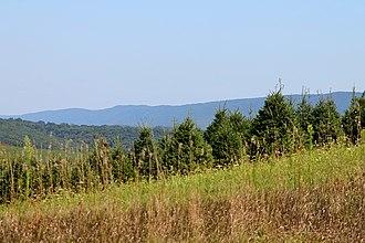 Orange Township, Columbia County, Pennsylvania - Orange Township looking southeast towards Knob Mountain