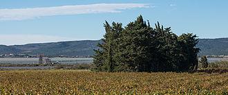 Villeneuve-lès-Maguelone - Image: Villeneuve lès Maguelone, Hérault 12