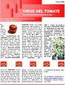 Virus tomate.jpg