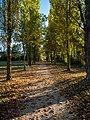 Vitoria - Campo de los Palacios -BT- 07.jpg