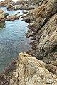 Vivier maritime de la Gaillarde à Roquebrune-sur-Argens le 10 février 2017 - 07.jpg